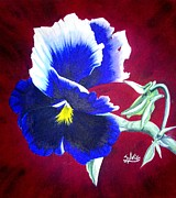 Photo Tapestries - Textiles Prints - Pansy Print by Sylvie Heasman