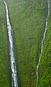 Lush Forest Mountains Framed Prints - Papalaua Waterfall Molokai Framed Print by Jim Chamberlain