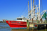 Papa Posters - Papas Girl Mayport Shrimp Trawler Poster by David  Brown