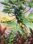 Art Medium Paintings - Papayas for Breakfast by Mary Lucas Faustine - Printscapes