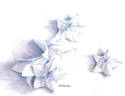 Quite Originals - Paper petals by K M Pawelec