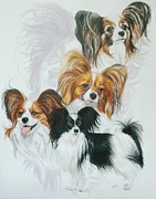 Toy Breed Prints - Papillon Print by Barbara Keith