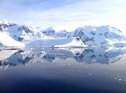 Antarctica Prints - Paradise Bay Print by Kelly Cheng Travel Photography