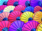 Parasols Paintings - Parasols by Dominic Piperata