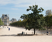 Romance Renaissance Photos - Paris - Jardin des Tuileries by Philip Sweeck
