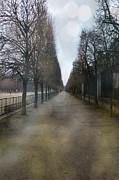 Surreal Paris Decor Photos Prints - Paris Nature - The Tuileries Row Of Trees  Print by Kathy Fornal