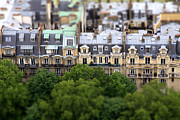 Martine Roch - Paris roofs