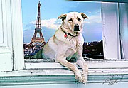Puppy Mixed Media - Paris Vacation by Lauranns Etab