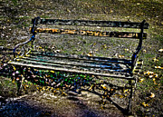 Park Benches Prints - Park Bench Print by Colleen Kammerer