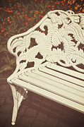 Floral Art Photos - Park Bench by Joana Kruse