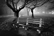 Night Scene Prints - Park Benches Print by Gary Heller