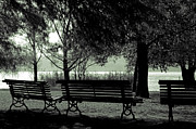 Gloomy Acrylic Prints - Park Benches In Autumn Acrylic Print by Joana Kruse