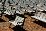Park Benches Photo Metal Prints - Park Benches Metal Print by Perry Webster