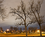 Lighted Park Framed Prints - Park Field at Night Framed Print by Thom Gourley/Flatbread Images, LLC