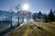 Park Benches Photos - Park on the lakefront by Mats Silvan