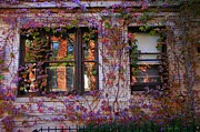 Bklyn Prints - Park Slope Wall Print by Mark Gilman