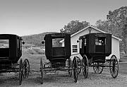 Amish Buggy Photos - Parked Buggies by Fred Lassmann