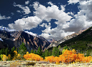 Mountain Scene Photo Prints - Parker Canyon Fall Colors Californias High Sierra Print by Bill Wight CA
