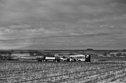 Rural School Bus Photos - Parking in a Stubbled Field by Alan Tonnesen