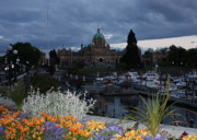 Domes Prints - Parliament Building in Victoria at Dusk Print by Carol Groenen