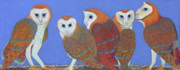 Owl Pastels Framed Prints - Parliament of Owls Framed Print by Tracy L Teeter