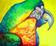 Maria Bohabot - Parrot in Color