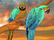 Macaws Prints - Parrots at Sunset Print by Michael Durst