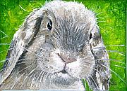 Bunny Paintings - Parsnip by Mary-Lee Sanders