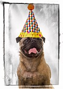 Party Birthday Party Metal Prints - Party Animal Metal Print by Edward Fielding