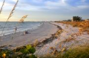 Sea Oats Prints - Pass A Grill Beach Florida Print by David Lee Thompson