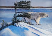 Wildife Painting Posters - Passing By  Polar Bear Poster by Santo De Vita