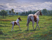 Quarter Horses Framed Prints - Passing It On Framed Print by Fawn McNeill