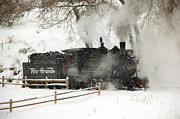 Train Photos In The Winter Posters - Passing the Fence Poster by Ken Smith
