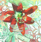 Passion Fruit Flower Prints - Passion Collision Print by Arlissa Vaughn