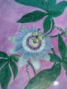 Passiflora Paintings - Passion Flower by Melina Mel P