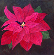 Anke Wheeler - Passion Poinsettia