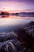 Lake Prints - Pastel Dawn Print by Mike  Dawson