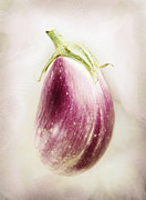 Eggplant Framed Prints - Pastel Eggplant Framed Print by Marilyn Hunt