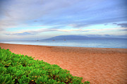 Beach Photograph Prints - Pastel Kaanapali Beach  Print by Kelly Wade