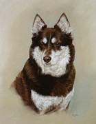 Lisa  Ober - Pastel Portrait of Dog