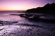 Noel Elliot - Pastel Sunrise and Rock Shelf