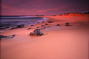 Noel Elliot Prints - Pastel Sunrise At The Beach Print by Noel Elliot