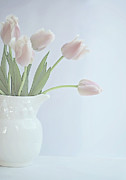 Focus On Foreground Art - Pastel Tulips by This Wonderful Life