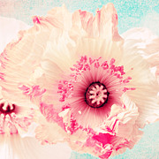 Blossoms Mixed Media Posters - Pastell poppy Poster by Angela Doelling AD DESIGN Photo and PhotoArt