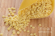 Noodles Prints - Pastina And Conchiglioni Print by Photo Researchers, Inc.