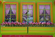 Architecture Digital Art Originals - Pastle Windows by Rob Hans