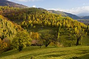 Romania Photos - Pastoral Autumn Landscape In Romania by Bob Gibbons