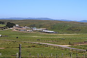Sides Framed Prints - Pastoral Landscape of Point Reyes California . 7D15958 Framed Print by Wingsdomain Art and Photography