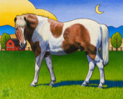 Pinto Horse Paintings - Patches by Stacey Neumiller