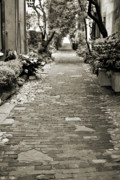 Brick Street Photos - Patchwork Pathway in Sepia AKA Philadelphia Alley by Dustin K Ryan